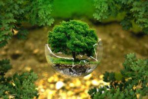 Dasar-Dasar Pengelolaan Lingkungan