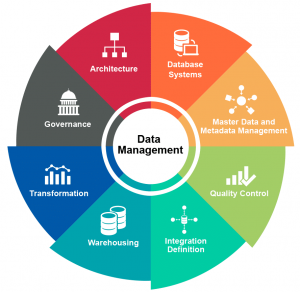 Database Management and Filing System