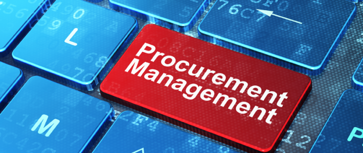 E-Procurement Audit Training