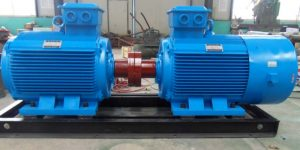 Electric Motor Protection