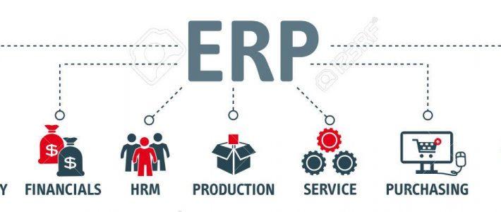 Pelatihan Enterprise Resource Planning dan Perencanaan Proses Bisnis
