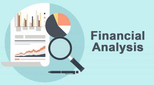 Financial Statement Preparation and Analysis
