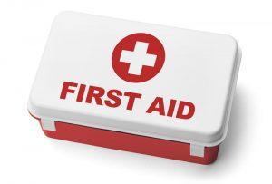 First Aid (Pertolongan Pertama Gawat Darurat)