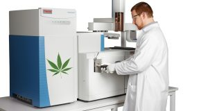 Gas Chromatography (GC)
